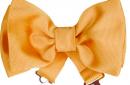 yellow bowtie